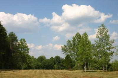 Front side pasture.JPG
