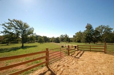 Barn pasture