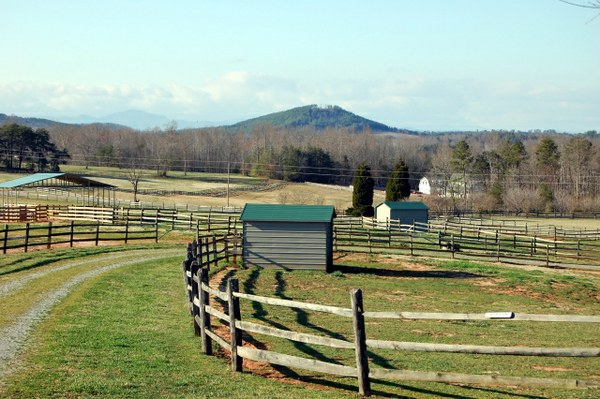 Double Quot T Quot Farm Lakes Hills And Horses