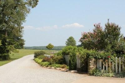 Roses picket fence -1024x768- -2.JPG