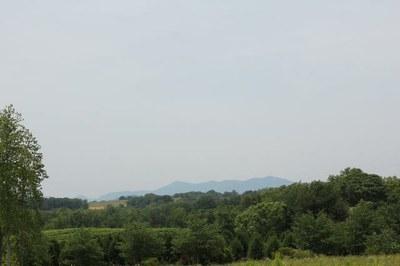 Area Mt View.jpg
