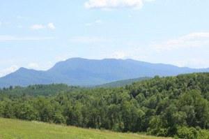 Mt view #1.jpg