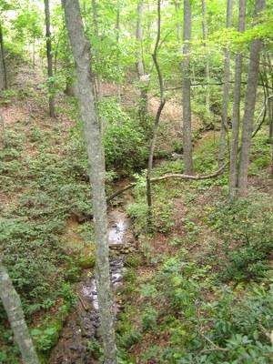 stream verticle