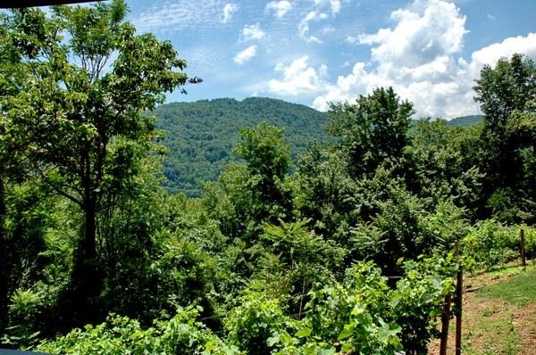 Norton Mountain View.jpg