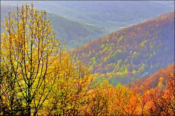 BeautifulFallFoliageinWesternNorthCarolina.jpg